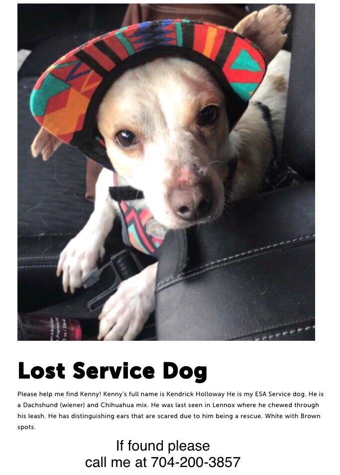 @Dillon_Bmx Please help me find my dog....