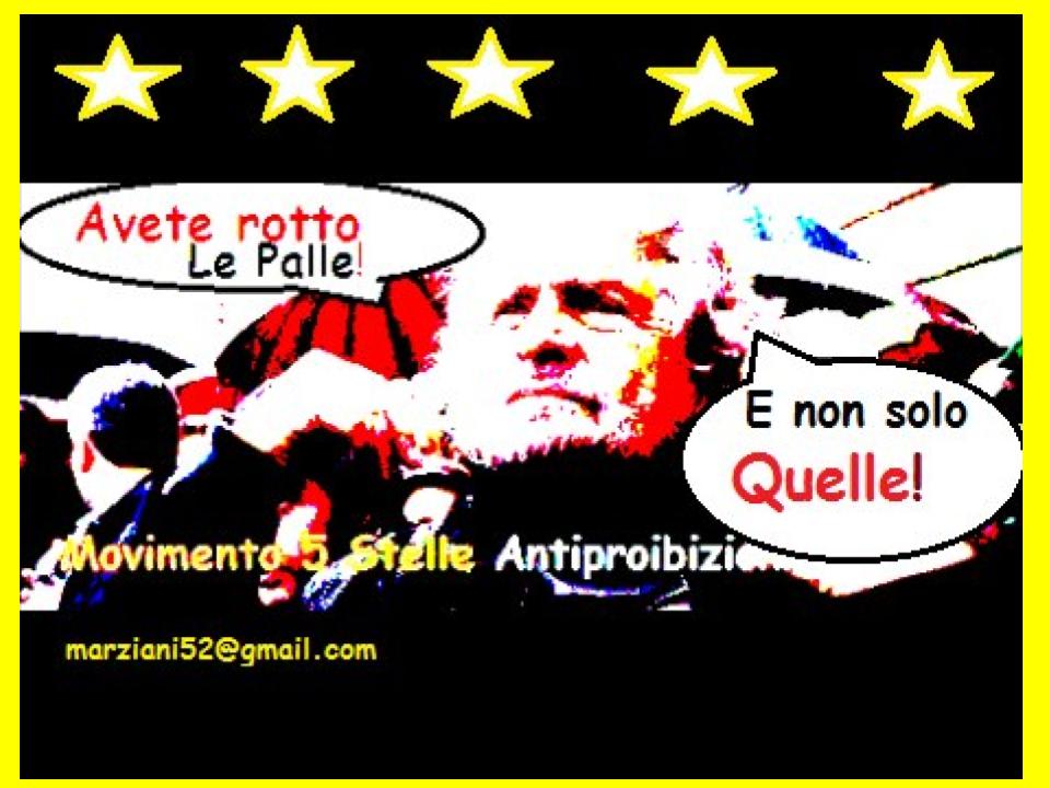 #propagandalive #italia5stelle #berlusconi #sapevatelo https://t.co/tQJX5VtQ8r