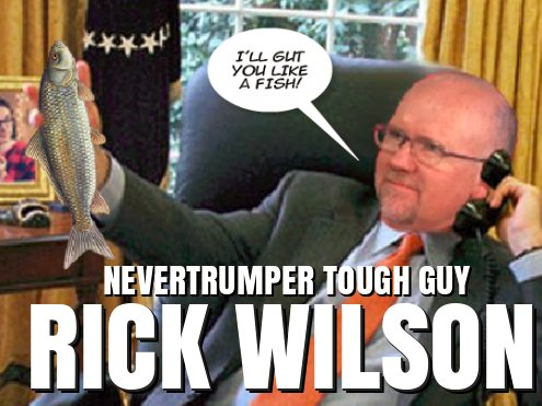 CNN tough guy Rick Wilson threatens Trump supporter: I Will Gut You Like a Fish
