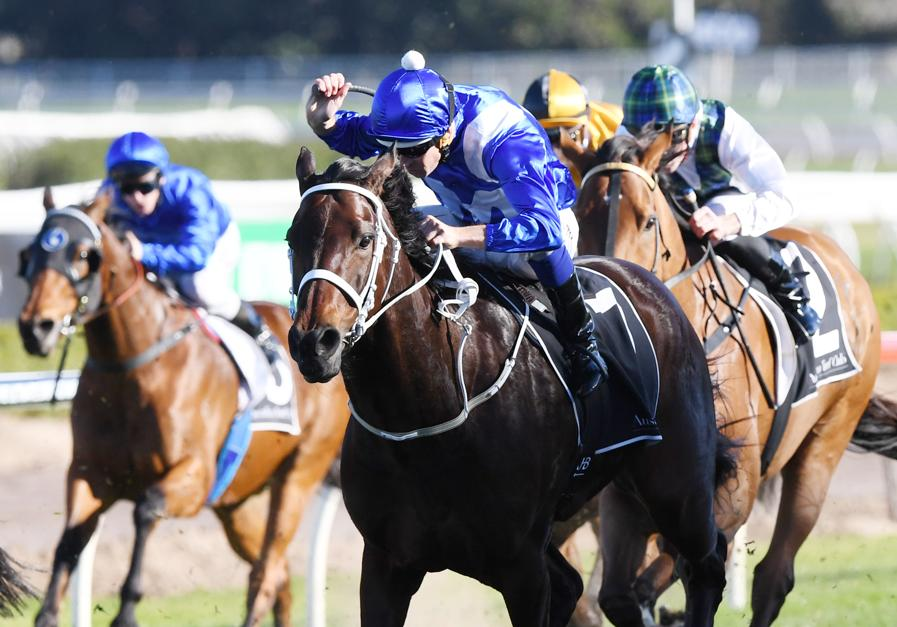 Waller's Royal Ascot checklist for Winx: 'If she wins the George Ryder by three lengths, and the Queen Elizabeth by two lengths, she'll be on the plane. She will go if she's 100%' @winx_horse @cwallerracing @heraldsunsport https://t.co/JL5JkUV50T