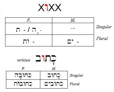 Hebrew Passive Participle