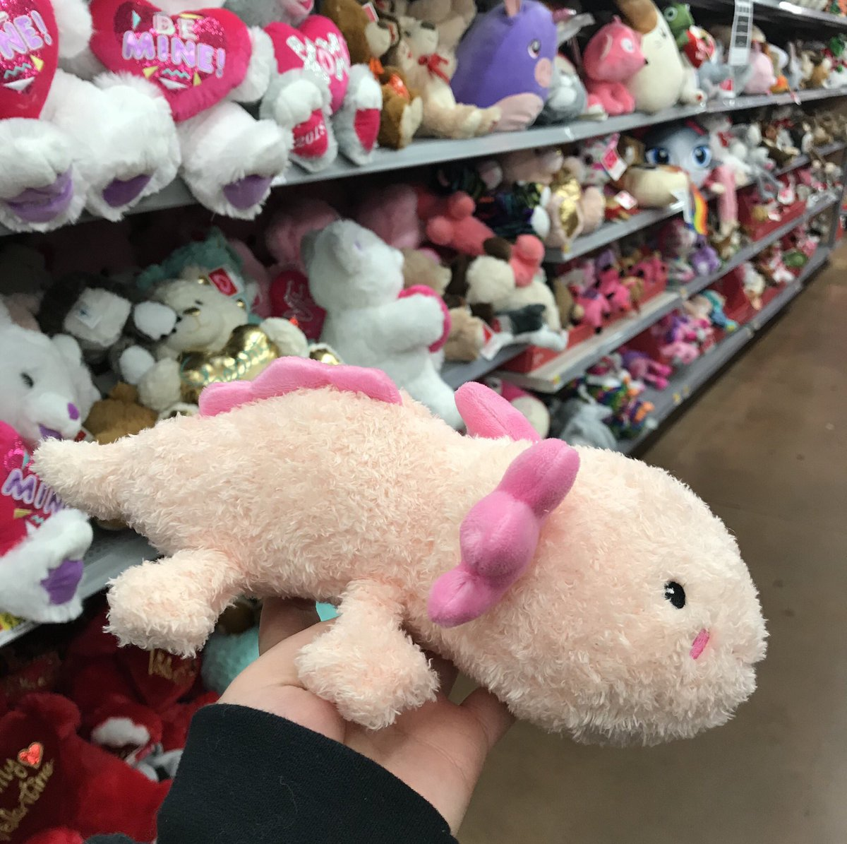 Walmart On Twitter Woohoo Can T Be That Cuteness Pia
