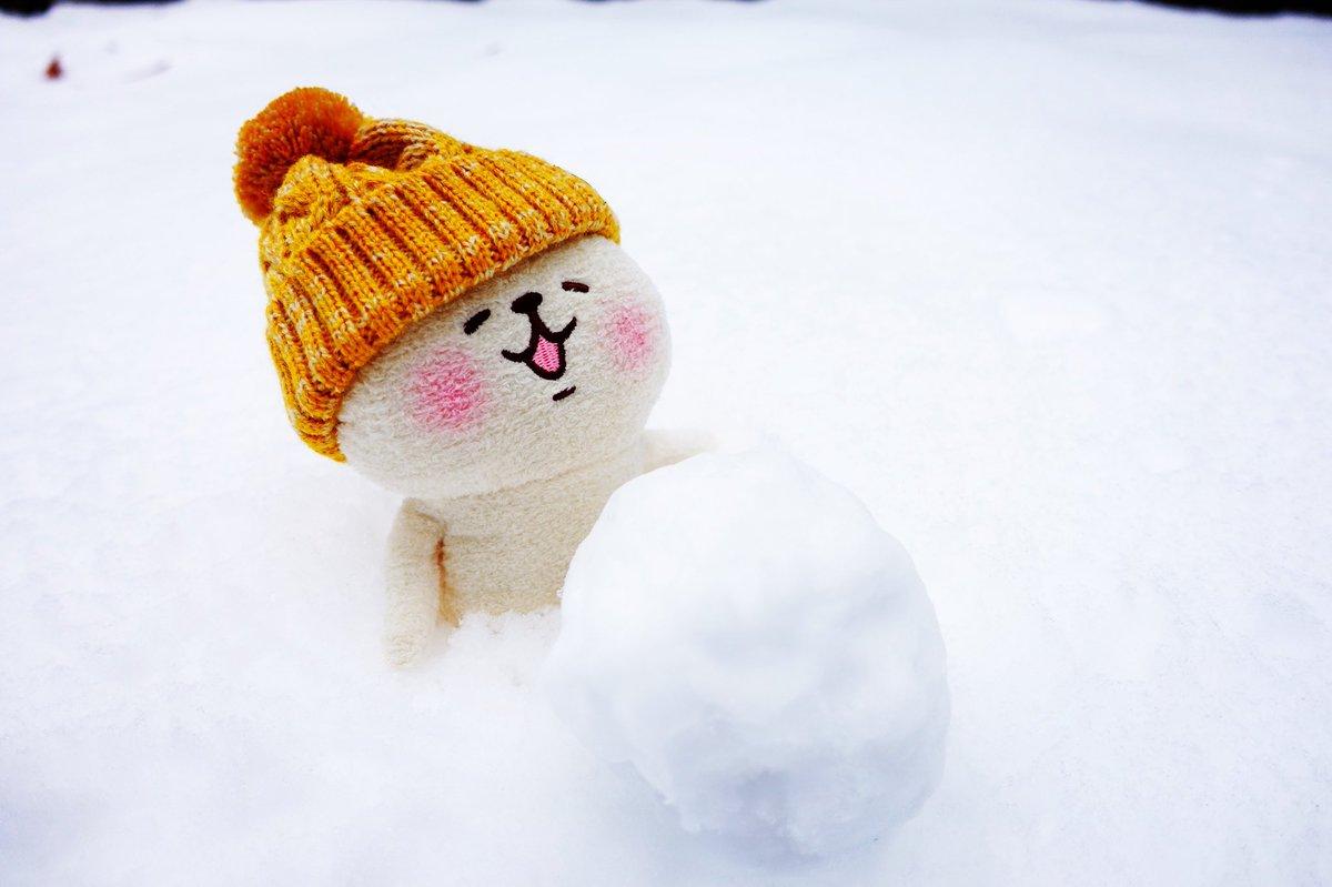 雪だるまを作ってたら動けなくなって途方に暮れてるねーねーねこ