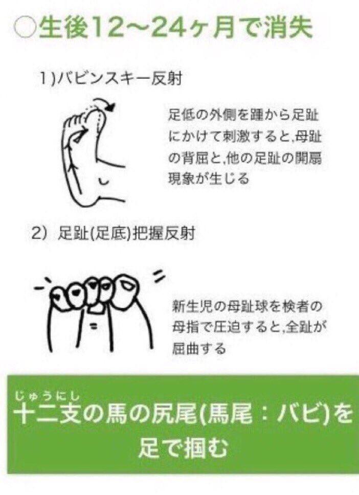 鰐部雄心 PTOT国試塾鰐部ゼミ塾...