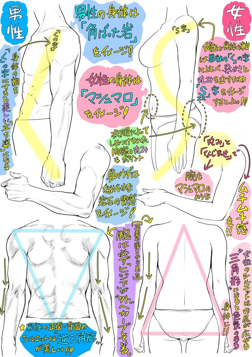 ✨学校では教えてくれない✨  🔷男性と🔴女性の【体の描き方】  「カラダの構造とバランス」編  【イ…