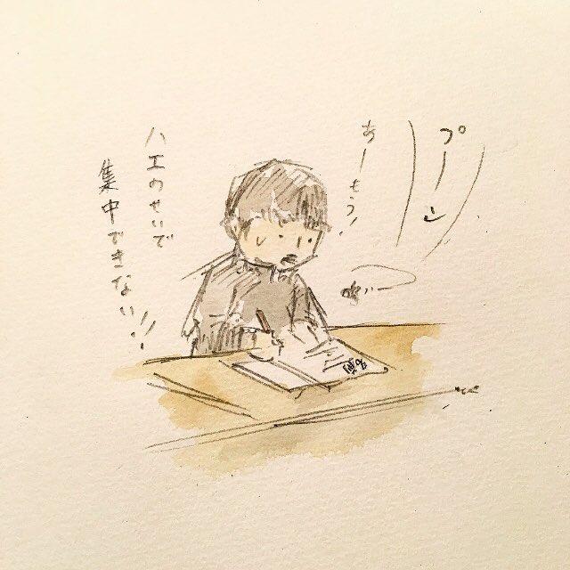 試験に来たハエ。