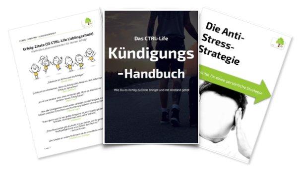 ebook Liesche Gruppen und Algebren