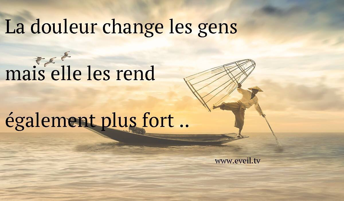 La compassion                                    #Proverbe #citation #spirituality #Zen #Spirit #bouddha #love #paix #joie #developpementpersonnel #blog #news #proverbes <br>http://pic.twitter.com/52YVovVtGi