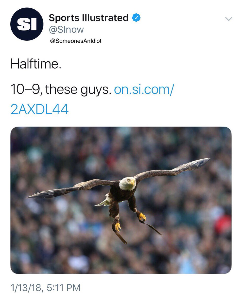 RT @SomeonesAnIdiot: Sports Illustrated can't tell the difference between an Eagle and a Falcon #ATLvsPHI https://t.co/9MXtK2eT7P