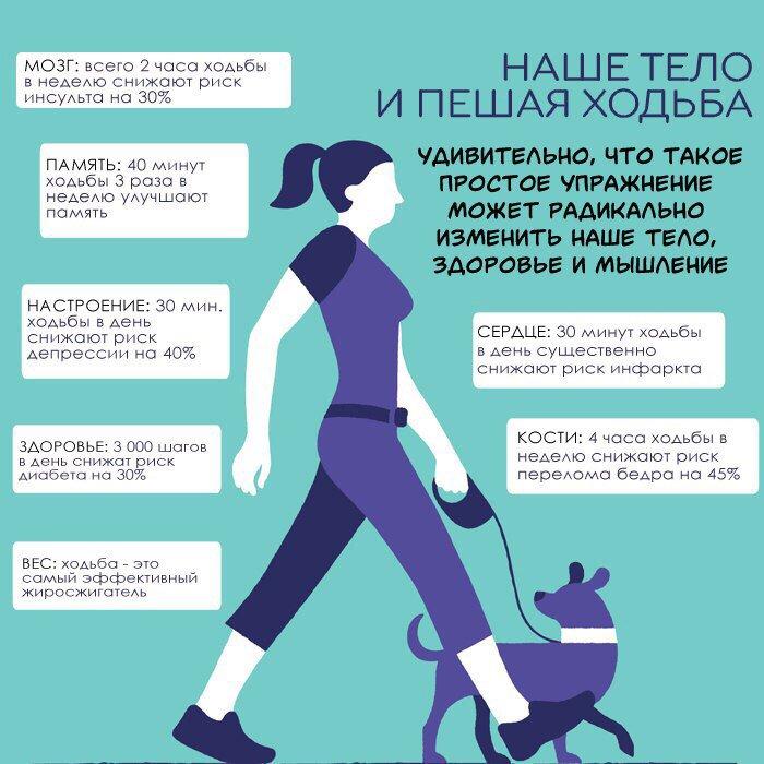 Ходьба влияет на похудение