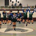 Image for the Tweet beginning: #FCVC 14U Girls Blue finished