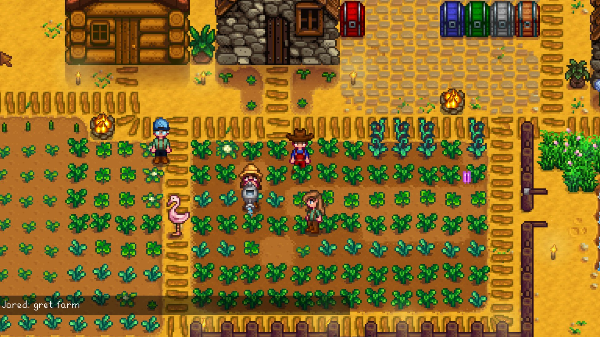 Stardew Valley Multiplayer
