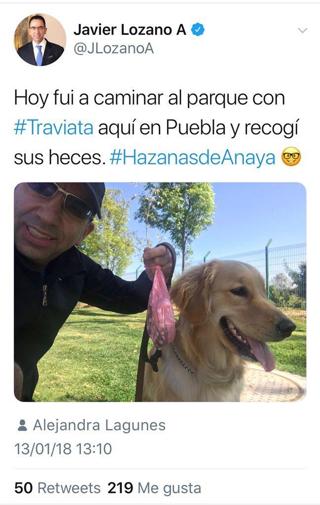 RT @GustavoVela71: Uno de los perros de la foto es inteligente y gracioso https://t.co/RHpqidjRrA