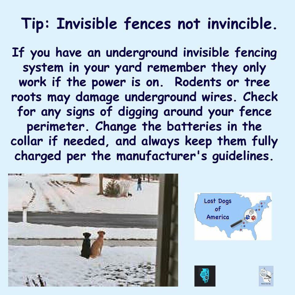 Lost Dogs Illinois On Twitter Check Your Fenceseven Electric What Is Fencing How Does An Fence Work Fences Have Problems Invisible Lostdog Lostdogsil