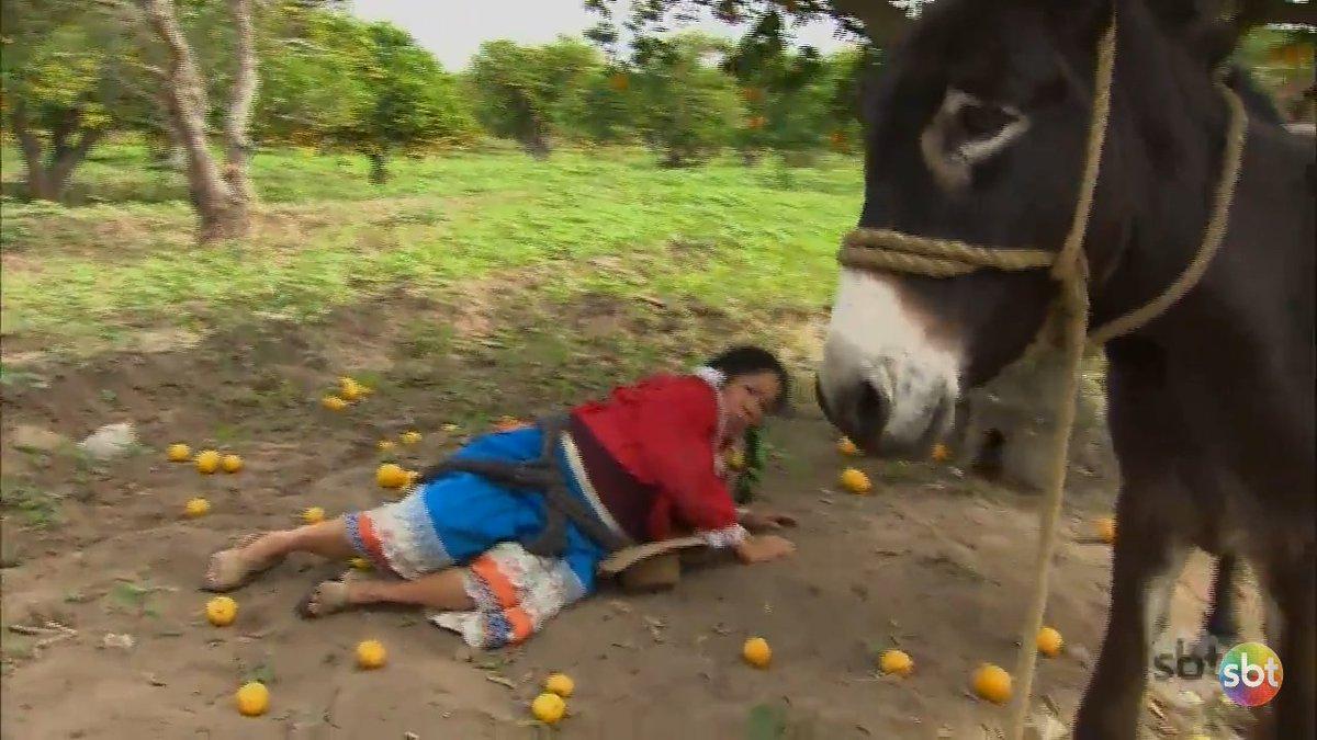 RT @NovelasParaTS: E é assim que se pega laranjas #CoraçãoIndomável001 https://t.co/m6OnhmieJ1