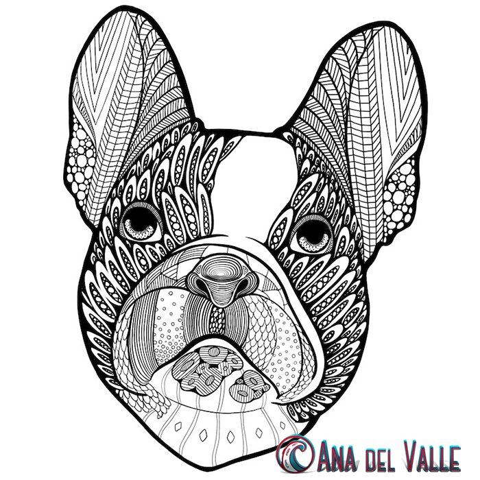 AnadelValleArt photo