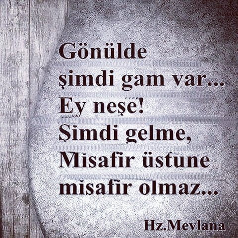 İyi geceler  #senolsan https://t.co/kYWQ...