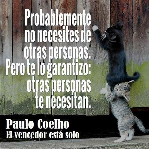 Fan Coelho On Twitter Frases Frasescoelho Coelho