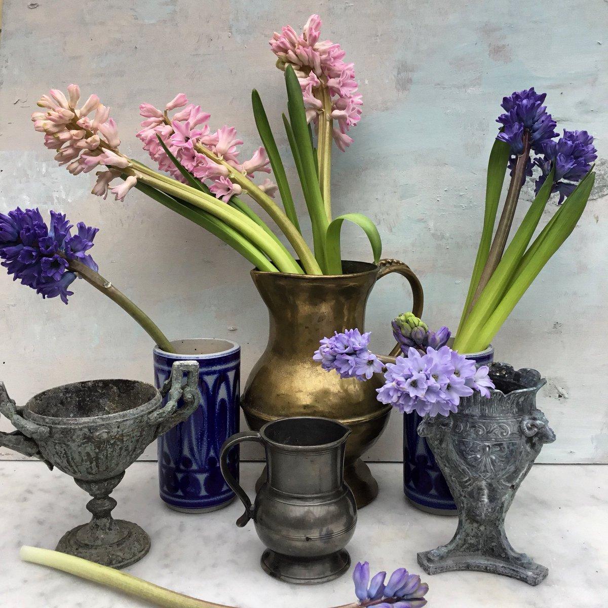 RT @GardenBrocante: Hyacinths and cool metal. #antiques https://t.co/AhsaDMicqU