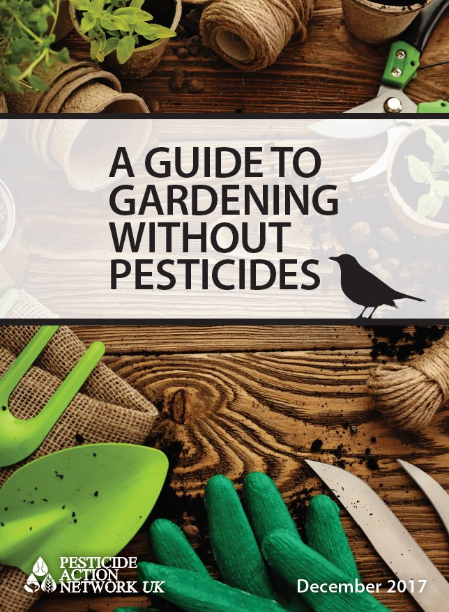 test Twitter Media - .@PAN_UK have released a guide to gardening without #pesticides. Check it out: https://t.co/qor7tpFpG7 https://t.co/b1V2xxEh3J