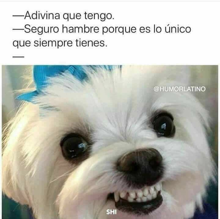 Yo, siempre 😂😂😂 https://t.co/4iE9Pe6R9I