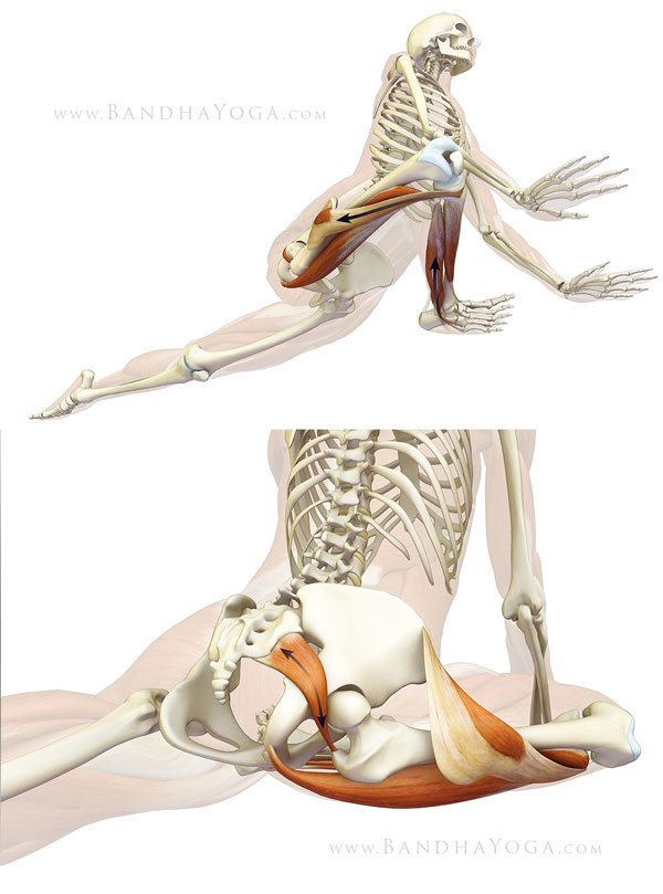 RT Protecting the knee in Pigeon Pose  ➡ https://t.co/TjROB4cIX1 https://t.co/X8Pyy035sF #health #well