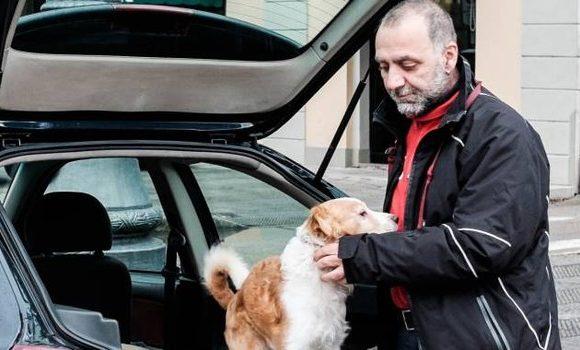 Vive in #auto per non lasciare il #cane:...