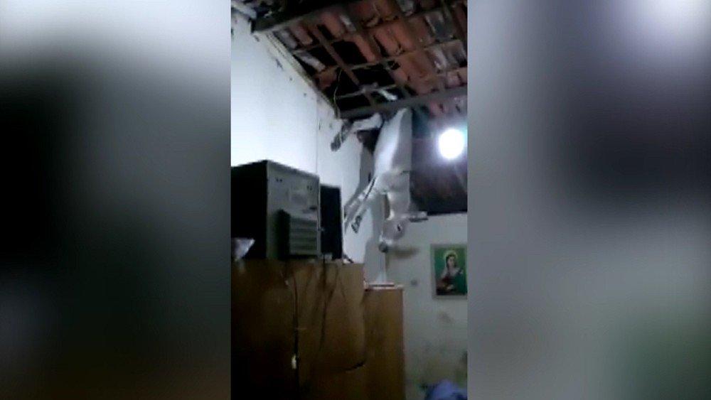 Jumento sobe em telhado de casa na Paraíba https://t.co/kyQCB9R8Au #G1