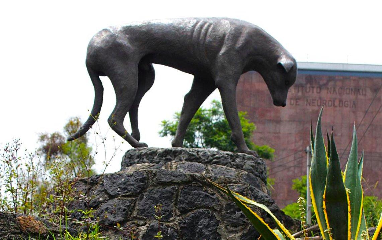 vista del monumento al perro callejero