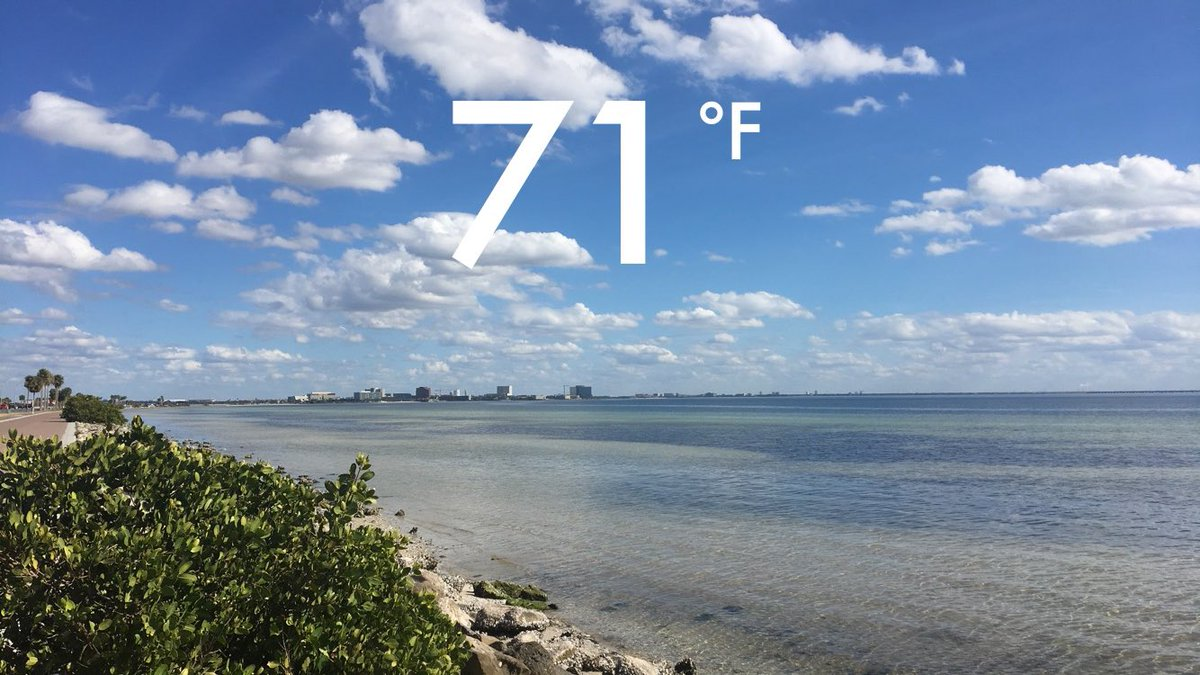Happy Tuesday from #TampaBay! @abcaction...