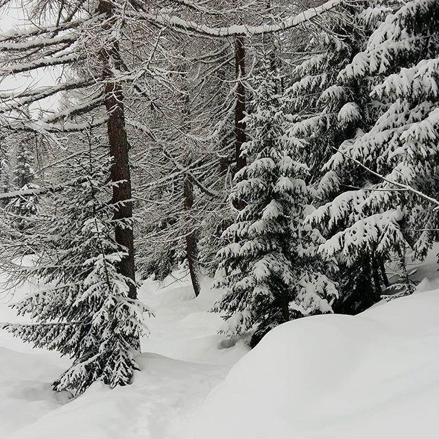 mein winter im wallis