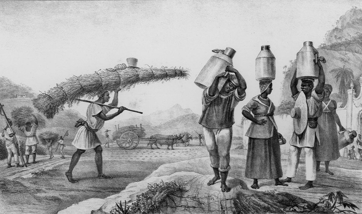 the history and impact of maafa or the african slave trade Some afrocentric scholars prefer the term maafa to african holocaust ↑ 60 61 reparations for the slave trade: rhetoric, law, history and the negro impact.