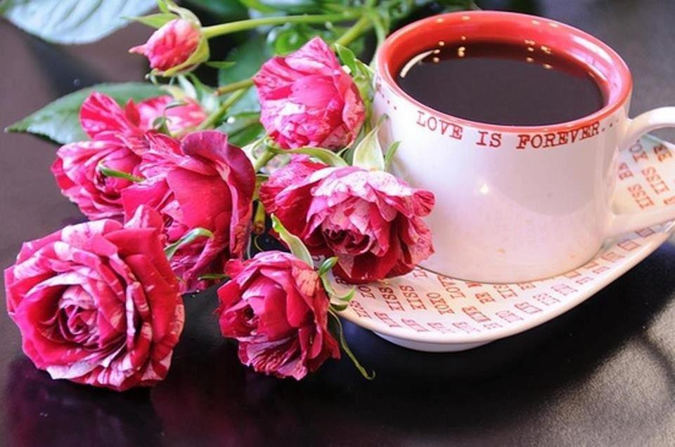 для картинки с добрым утром с розами картинки видел