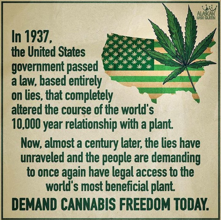 Stand up for your rights to this amazing and beneficial plant! Demand #Cannabis freedom today!! #HempHelps #CannabisCommunity<br>http://pic.twitter.com/pYX9UYW39O