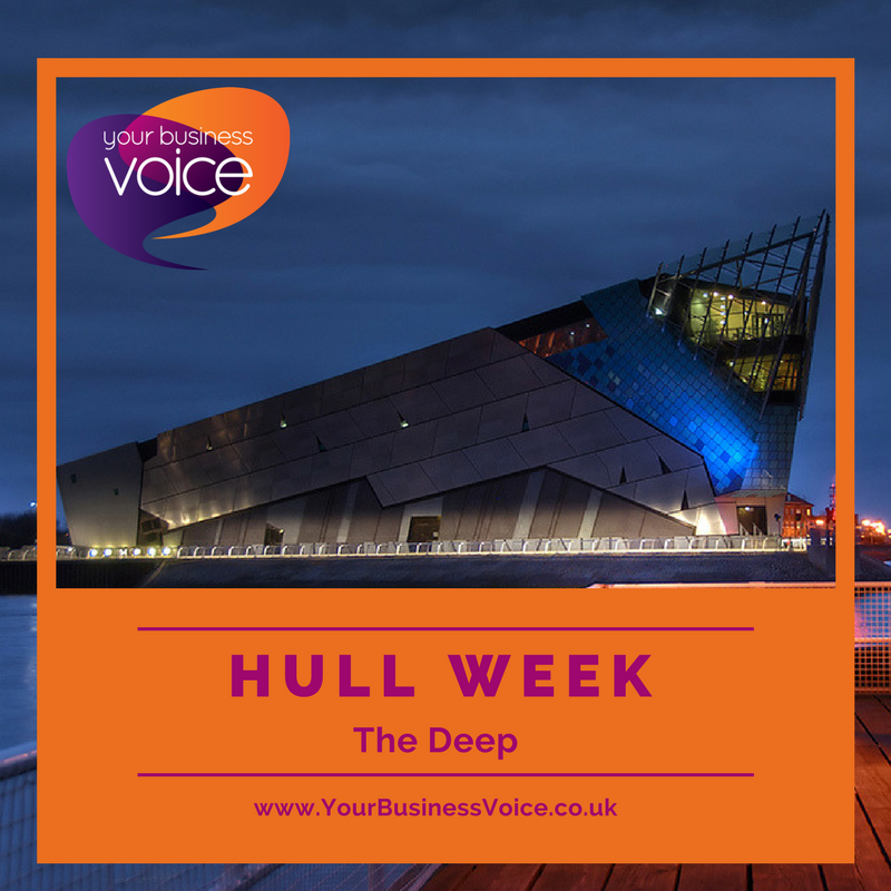 YBV HULL WEEK - The Deep -  A beautiful #aquarium with a main tank that&#39;s 33 ft underground, making it the deepest of its type in #Europe. With over 3000 creatures/marine life, @thedeephull welcomed over 850K visitors in its first year. #Hull #Yorkshire #YorkshireBiz @VHEY_UK<br>http://pic.twitter.com/NLtUbeqbes