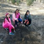 More pictures from our 6th grade science campers. 1st hike. @ITOFoundation @DrCarlosFPerez1 @aterrones1122 @AnaheimElem