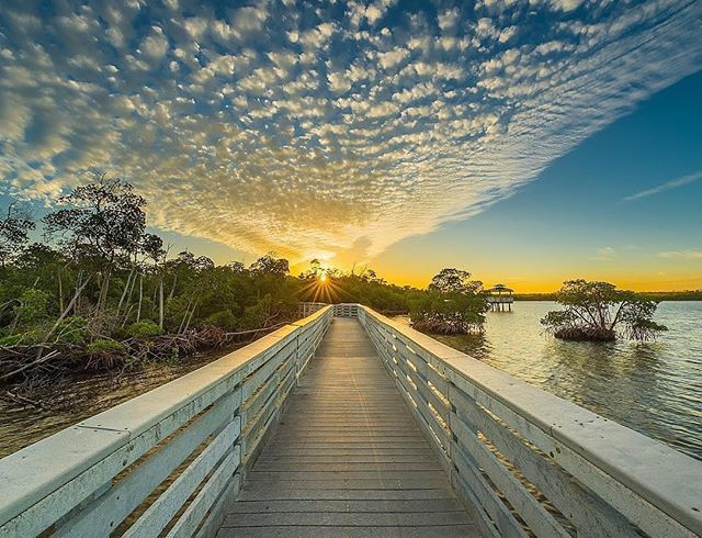 Afternoon skies above the Anne Kolb Nature Center #LoveFL Credit: https://t.co/nv6UNw3WdM https://t.co/LZYDVrVoEW