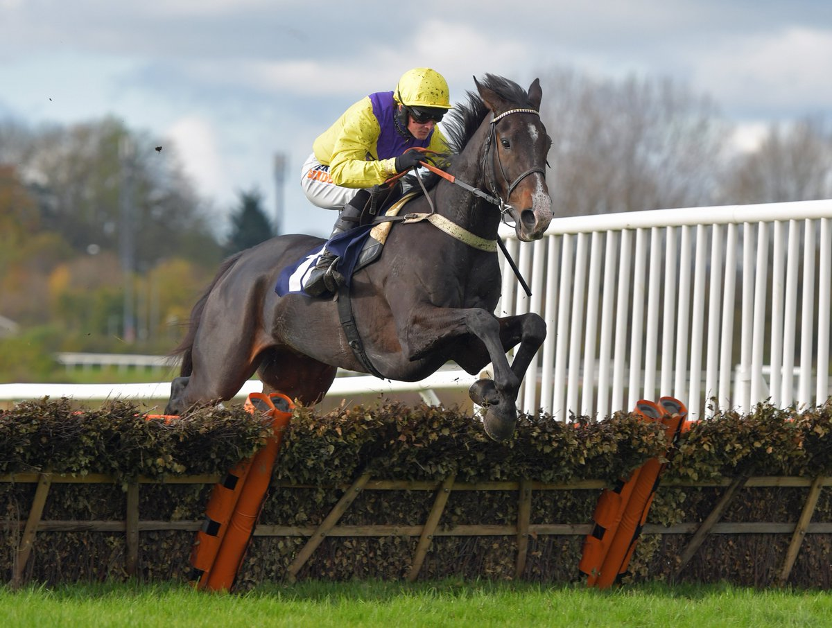 Which Cheltenham Festival race would our Tom Segal aim Kalashnikov at? Find out here https://t.co/v3Ttfi4Ntp