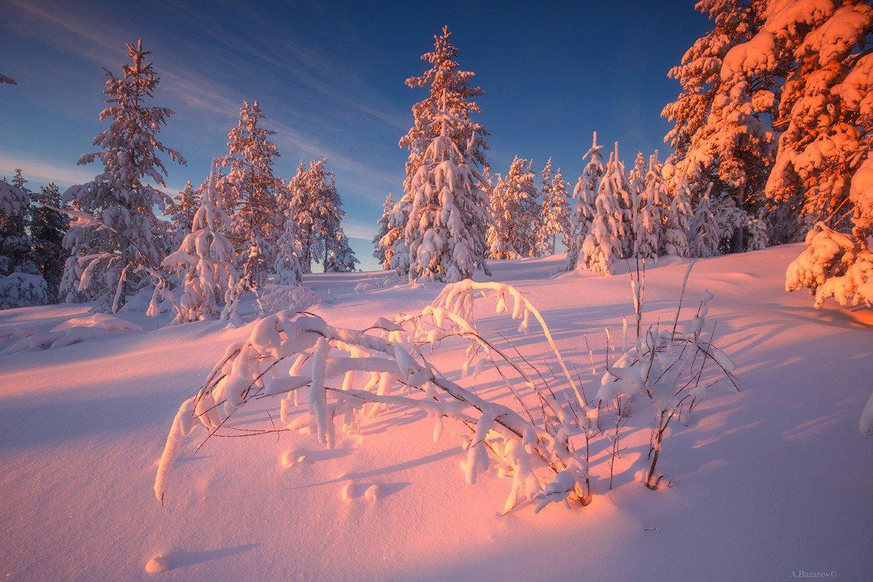 может фотография пейзаж зимушка чтобы