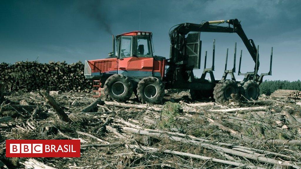 Cientistas temem que projeto de lei europeu incentive desmatamento no Brasil https://t.co/l3SdteseRb