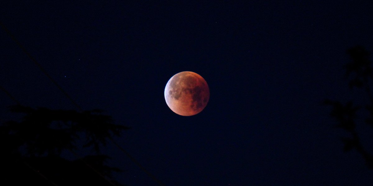 Dr Bruce Betts On Twitter My Pic From The Lunareclipse Missed