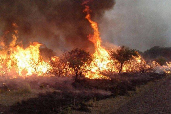 Provinciales | Incendios rurales: tres focos activos