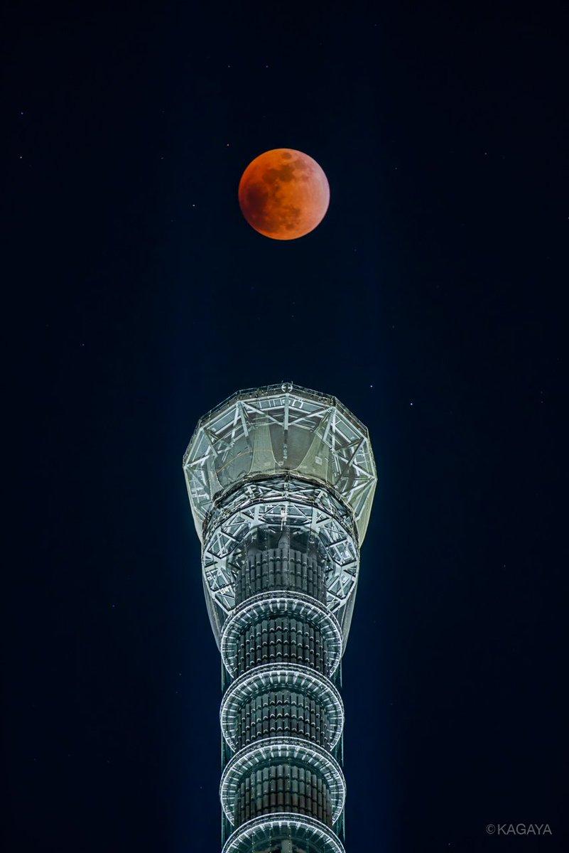 皆既月食。 幻想的な赤い月が東京の空にぽっかりと浮かんでいます。 (今東京スカイツリーにて撮影)