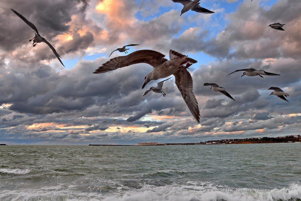 Севастополь ожидают облачные и ветреные выходные