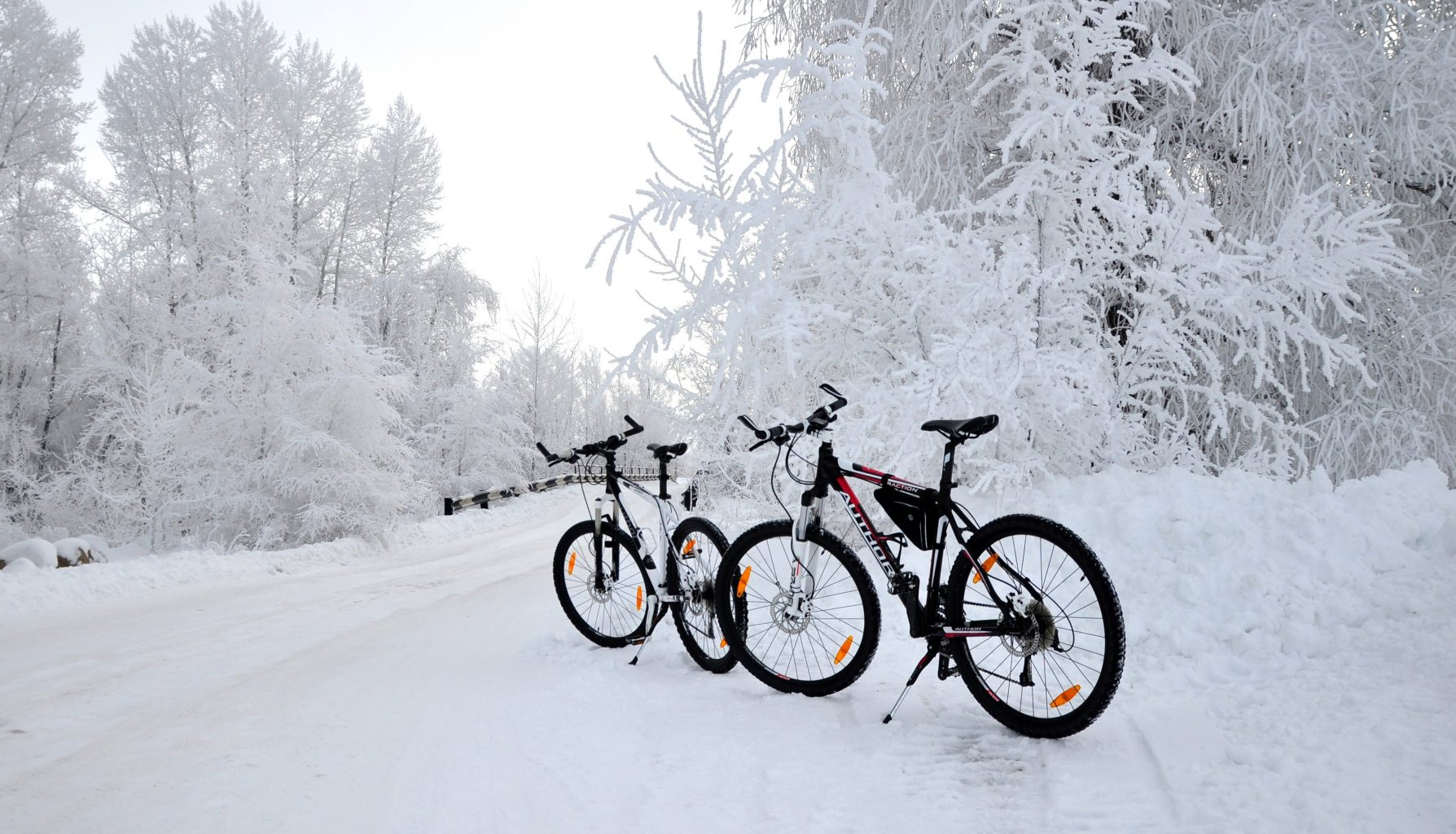 картинка велосипед и зима сетевых просторах