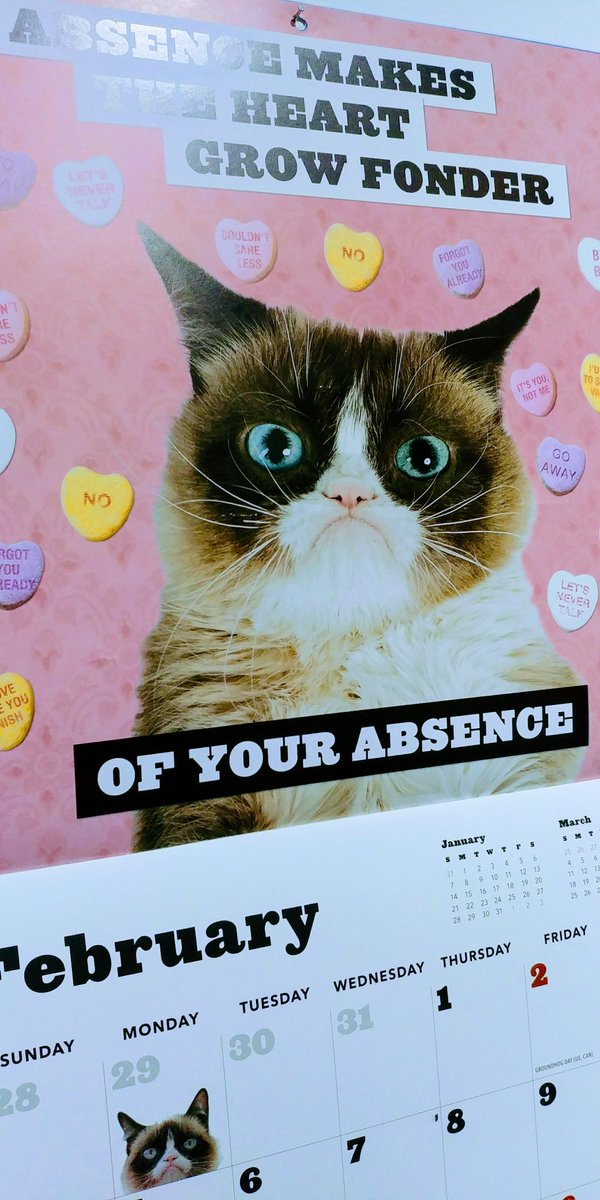 A new month means a new inspirational message from @RealGrumpyCat #February
