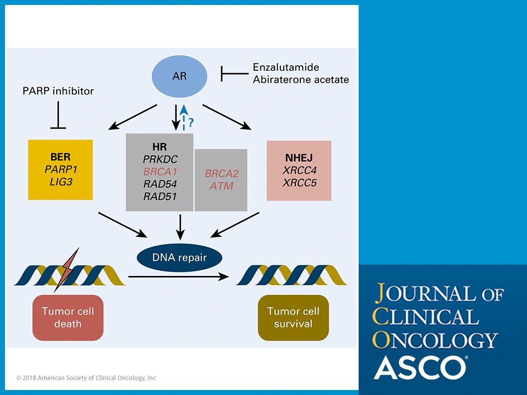 J Clinical Oncology on Twitter: