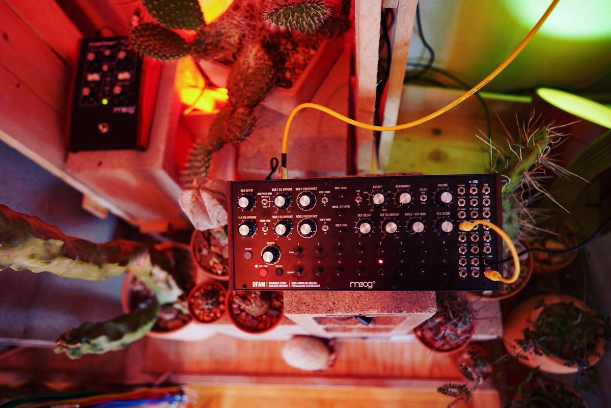 #DFAM Semi-Modular #Analog Percussion #Synthesizer — available now at a Moog Dealer near you // https://t.co/Z2WkWIot9A  📺 watch the full-length video: https://t.co/Tw4SmeSH4w