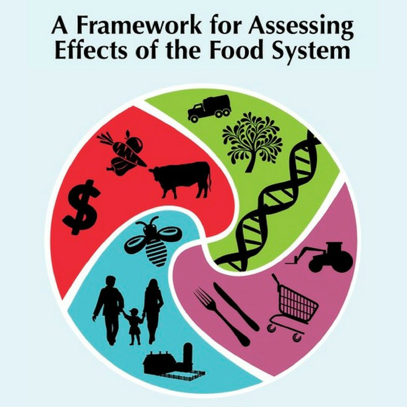 food industry effects Food politics: how the food industry influences nutrition and health our overefficient food industry must do everything possible to persuade people to eat.