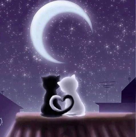 Certe notti.....la mente va verso il cuore, nel ricordo di chi non c'è più ❤️ https://t.co/y8kJ2Mek52